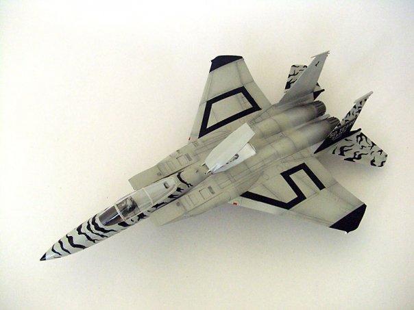 F-15TMOTA