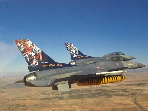Tigermeet