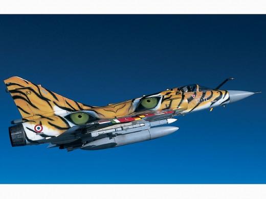 dassault mirage 2000 tiger meet