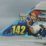 Custom Decal Untuk Diecast F-16 Tiger Meet